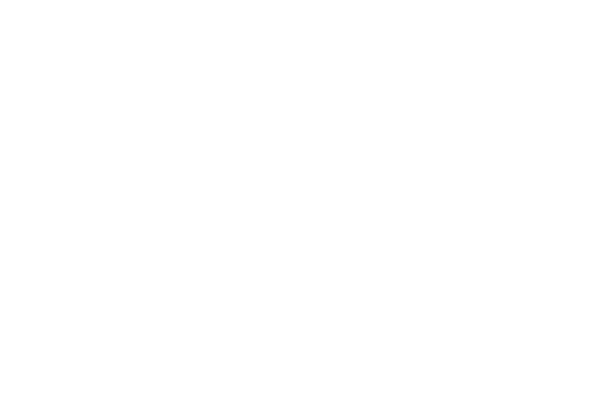 The Sole Proprietor